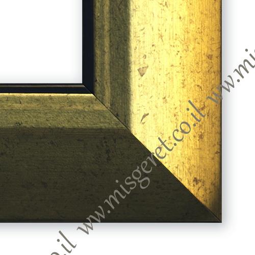 מסגרות בצבע זהב, מק''ט 196