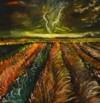 שדה בסערה