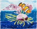 חיות הים