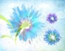 פרחים על משיכות מכחול