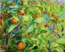 תפוזים