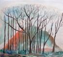 עץ בשקיעה