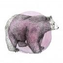 דובי שחור