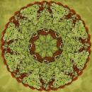 מנדלה ירוק 9