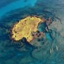 אי ירוק בים