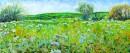עמק ירוק