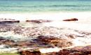 גלים על סלעים