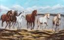 דהרת סוסים