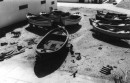 תל אביב 1937 סירות על
