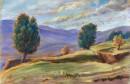 אורנים בהרי יהודה - 19