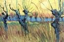 Van Gogh 173