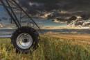 חקלאות מודרנית