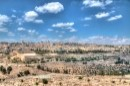 היופי של ירושלים