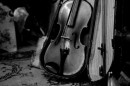 כינור למכירה