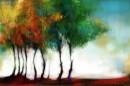 העצים שלימדו אותי פסדו
