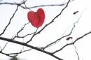 לב הענין