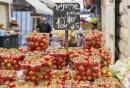 דוחן  עגבניות