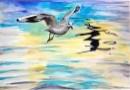ציפור וצל
