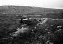 תאונת מטוס 1948 סריס
