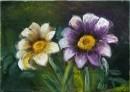 פרחים בהרמוניה
