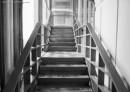 מדרגות לגן עדן