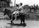 עין חרוד 1947 ילדים וח