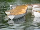 סירות צהובות