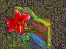פרח קוסמי