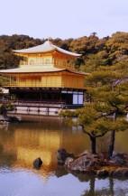 תמונה של מקדש הזהב בקיוטו | תמונות