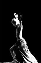 תמונה של the dancer | תמונות