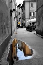 תמונה של אחרי הגשם | תמונות