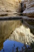 תמונה של מים במדבר  | תמונות