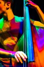תמונה של צבעי הקונטרבס   תמונות