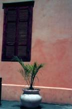 תמונה של ליד החלון | תמונות