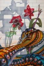 תמונה של פרח האיביסקוס והנחש | תמונות