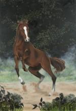 תמונה של סוס אנרגטי | תמונות