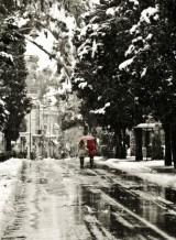 תמונה של הליכה בשלג | תמונות