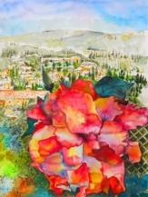 תמונה של פרח רב צבעים | תמונות
