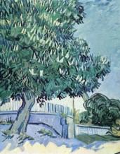 תמונה של Van Gogh 039 | תמונות