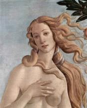 תמונה של Botticelli Sandro 026 | תמונות