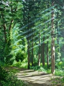 בוקר ביער