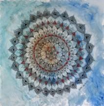 תמונה של מרגנית כחולה | תמונות