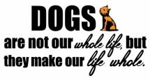 תמונה של Dogs are our life   תמונות
