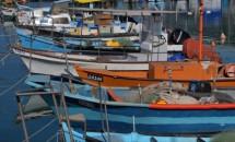 תמונה של הסירות בנמל יפו | תמונות