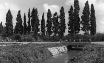 תמונה של נהריה 1942 נחל זורם | תמונות