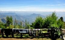 תמונה של הנוף מהמרפסת   תמונות