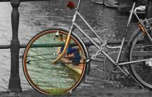 תמונה של גלגל | תמונות