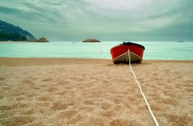 תמונה של השקט לפני הסערה | תמונות