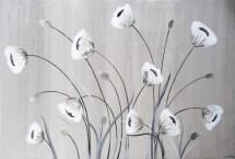 תמונה של פרחים לבנים | תמונות