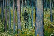 תמונה של Van Gogh 187   תמונות